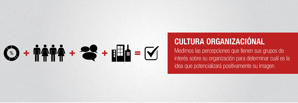 cultura organizacional monodual